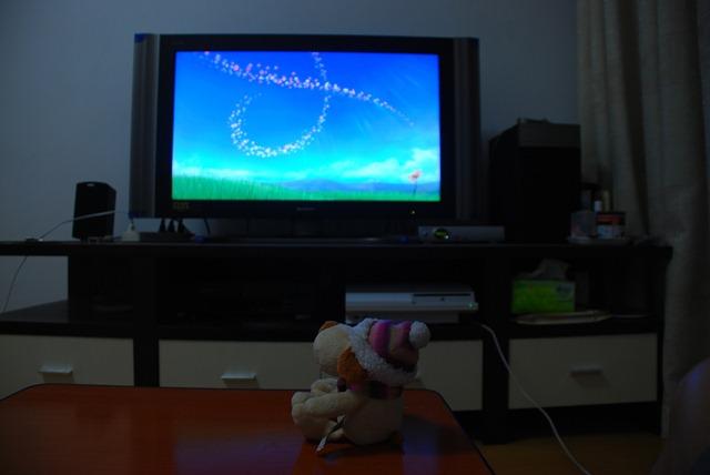 狗狗看电视