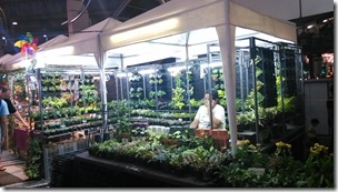 MBK植物铺